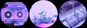 purple and pink plant circle divider f2u