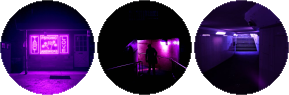 violet glow circle divider f2u