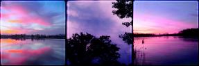 sky lights square divider f2u by cal-vain