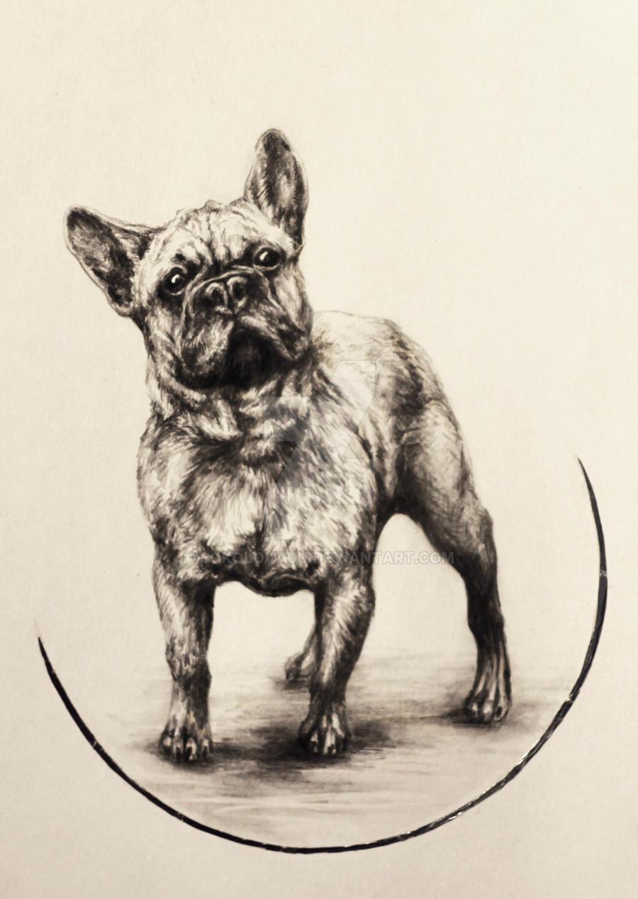 French Bulldog by SokolovaJu