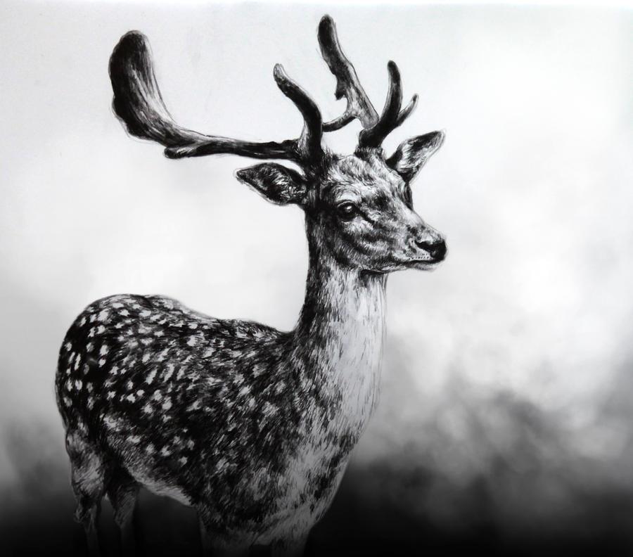 deer #15 by SokolovaJu