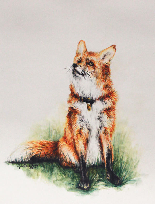 fox #2 by SokolovaJu