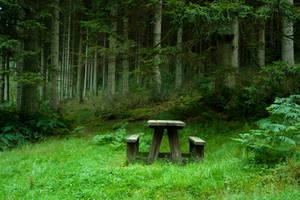 Woodland 33 by joannastar-stock
