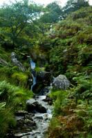 Landscape 103 by joannastar-stock
