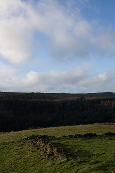 Landscape 164