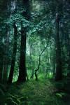 fantasy woodland bg 1