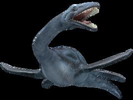 Elasmosaurus 01 by joannastar-stock