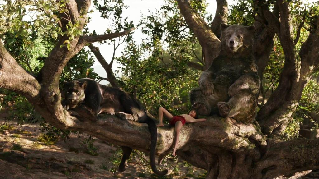 Mowgli, Bagheera and Baloo by KateHasBoobs