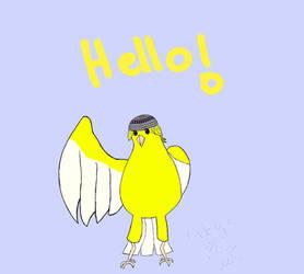Beanie Bird