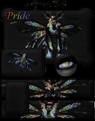 Arco Iris Bundle Banner M by NepinRith