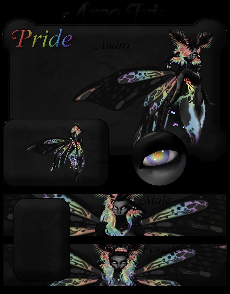 Arco Iris Bundle Banner A by NepinRith