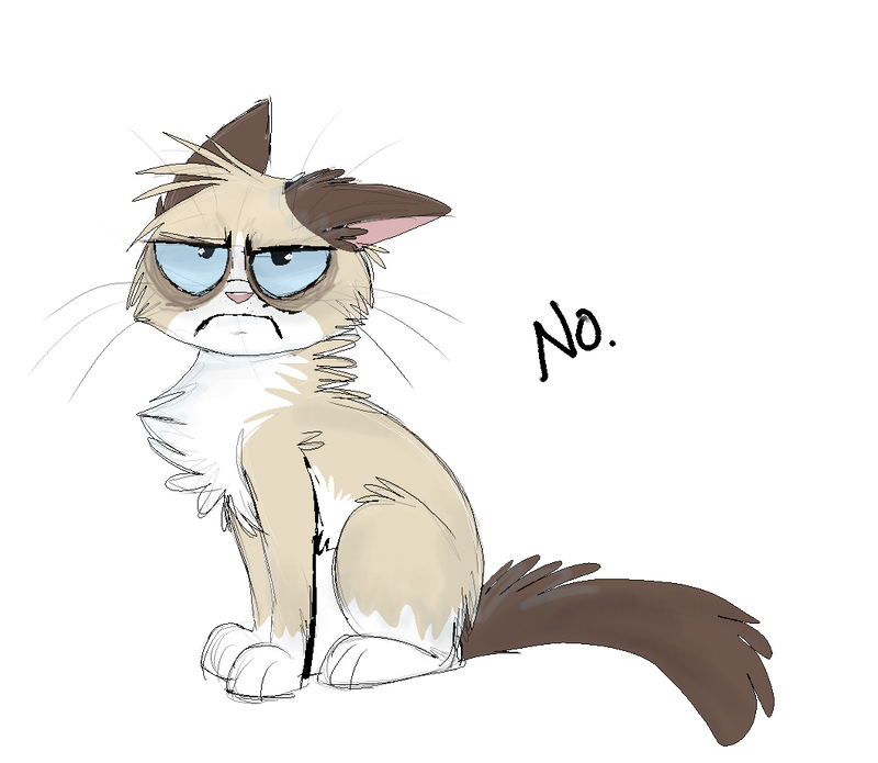Grumpy Cat by IamtehPILOT
