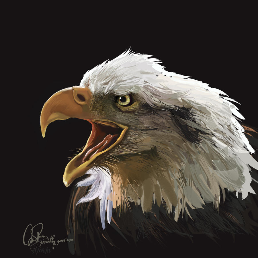 Eagle Call by preshky