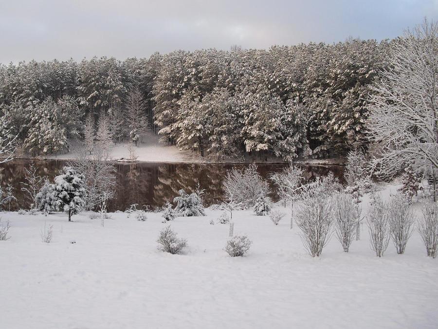 Winter at Lake Bedford by JeffrettaLyn