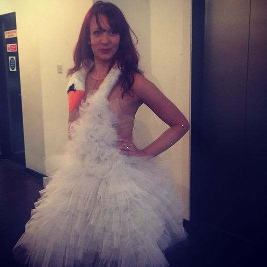 Bjork swan dress by silvia7