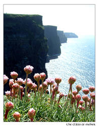 - the cliffs of moher -
