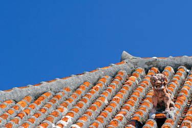 Roof by TSDMK