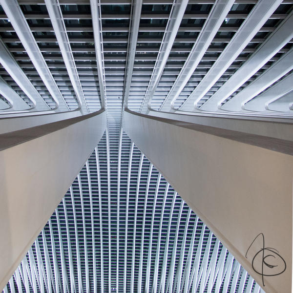 Liege-Guillemins by OK-Photography