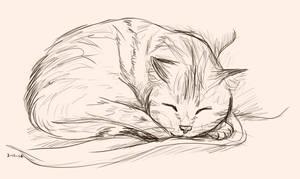 Cat Nap by Kat-Naps