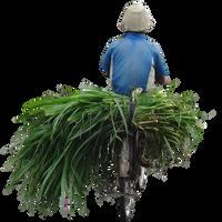 farmer3 by andhikazanuar