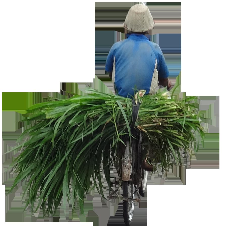 farmer3