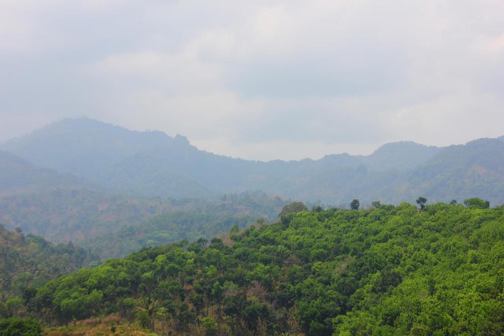 mountain lanscape by andhika zanuar