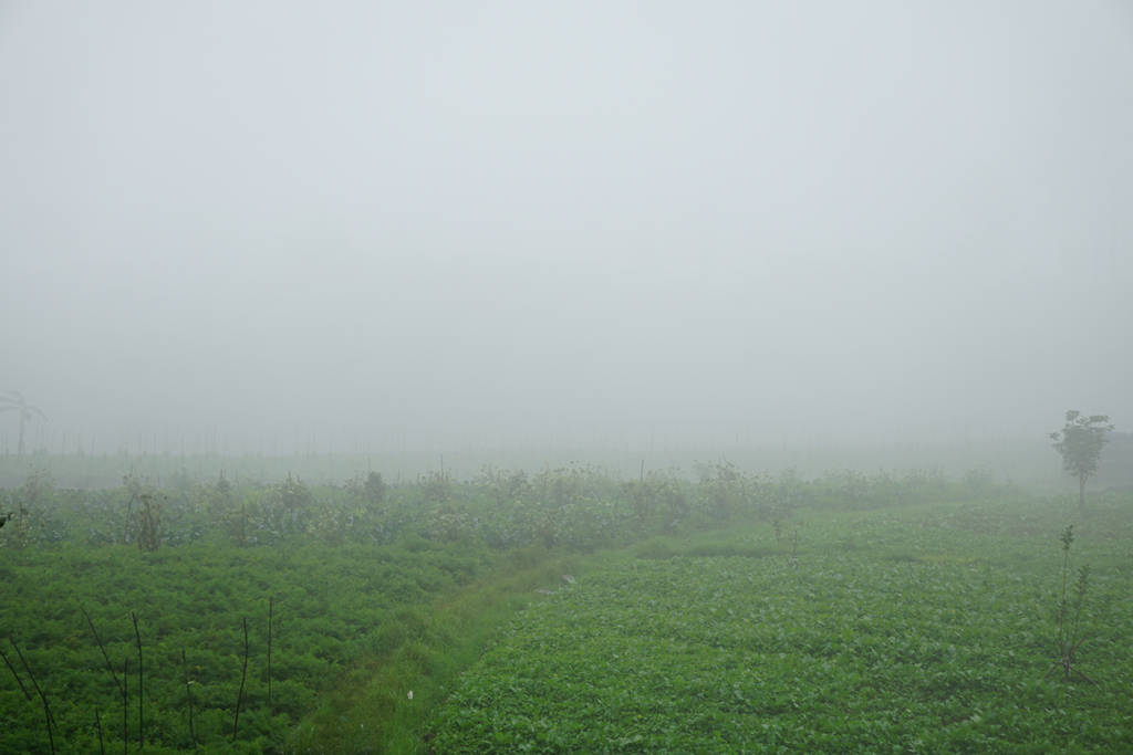 fog background by andhikazanuar