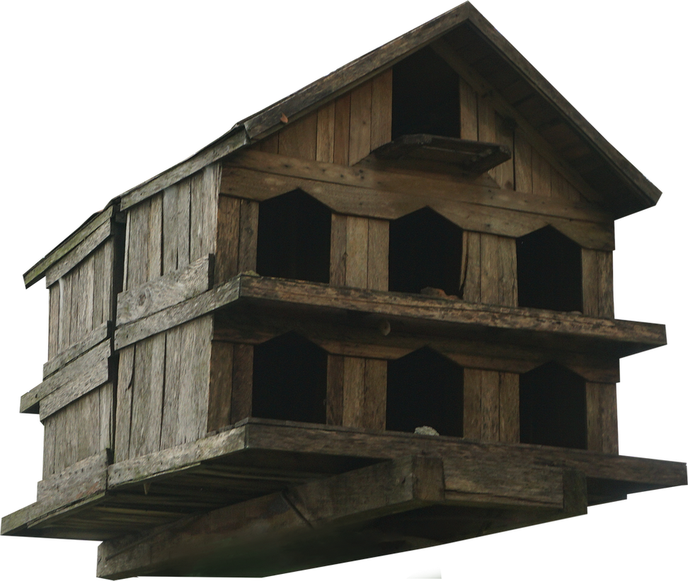 bird house PNG by andhikazanuar
