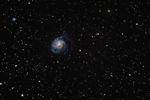 Pinwheel Galaxy (M101) from dark site