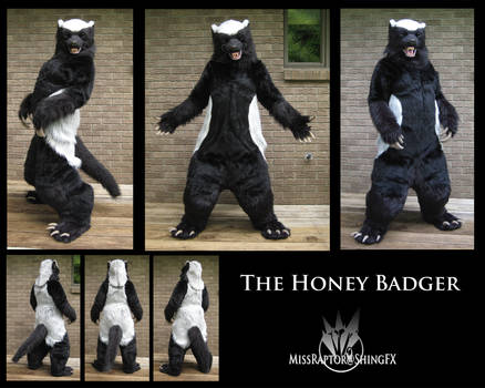 This...is the Honey Badger.