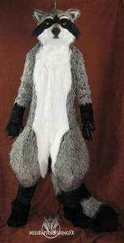 Raccoon fullsuit