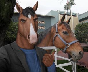 Stunt Double (BoJack Horseman) by Toledo-the-Horse