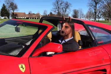 Ferrari Hoss [cmsn] by Toledo-the-Horse