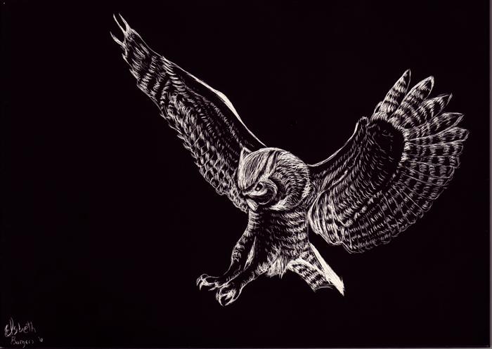 Scratch Board Owl by NstealthL