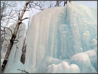 Ice Sculpture by jdurbin