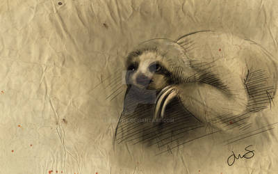 A Study in Sloth