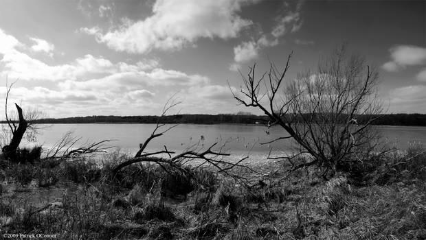 Cherokee marsh panoramic 4