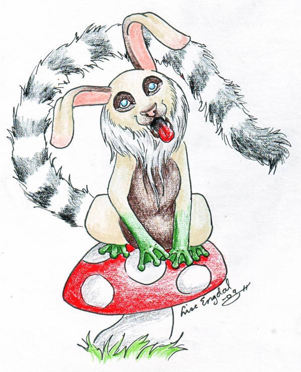 Dogbunnyfroglemur hybrid