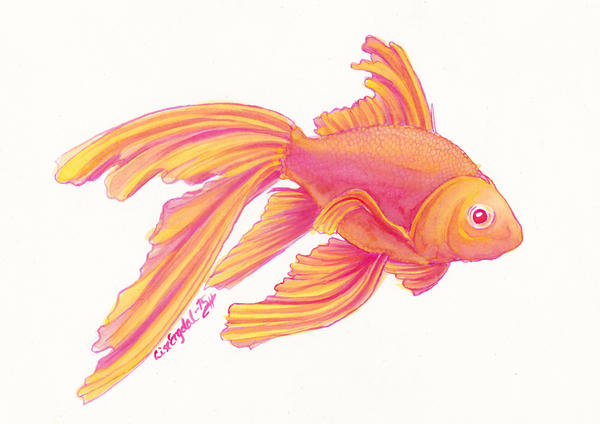 Aquarelle - Nano the goldfish by LARvonCL
