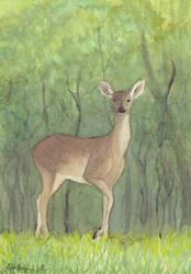 Always - aquarelle painting