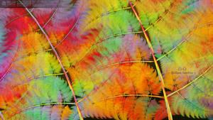 Fallen leaves by muzucya