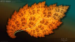 Plant leaf Type 004 by muzucya