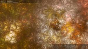 Untitled 20110131-01-0325