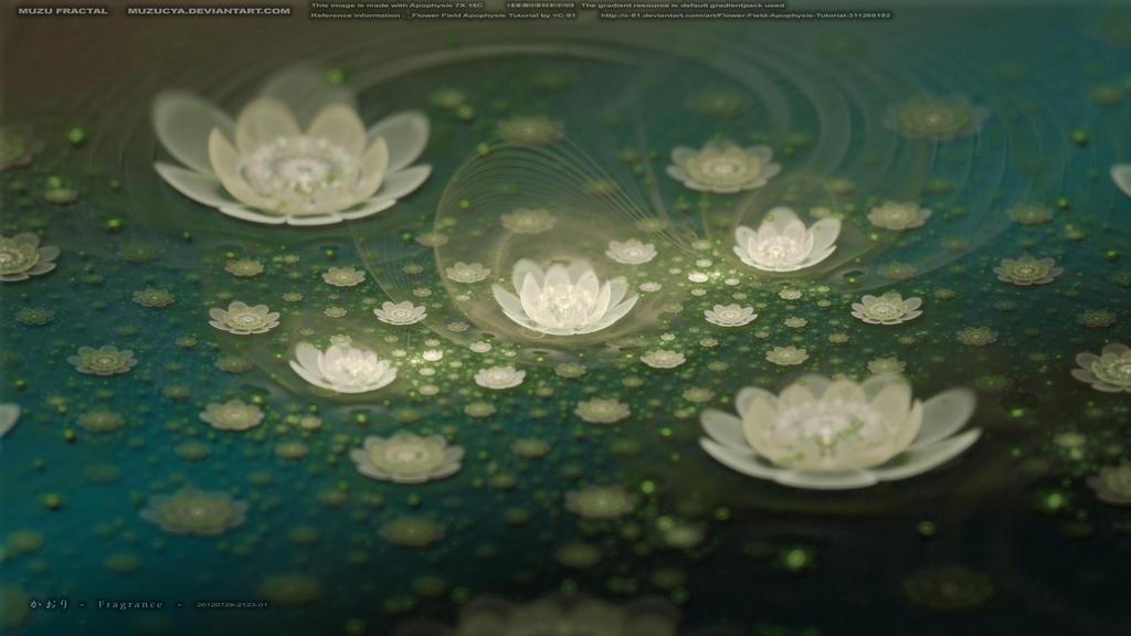 Fragrance - 20120728-2123-01
