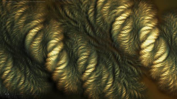 Untitled - 20121216-2029-01 1920-1080