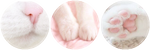 [F2U] Adore by KittensPurrgatory