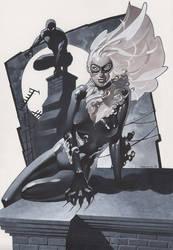 Black Cat and Spidey 2