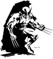 Wolverine by ChristopherStevens