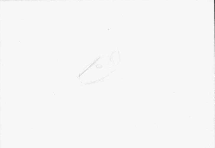 ohdeer1a_by_abronyaccount-db4lq5y.png
