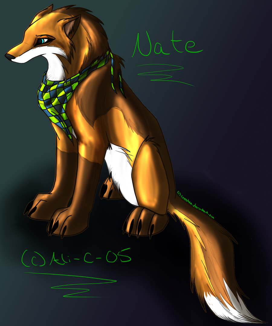 Nate Commission by IzzyShea